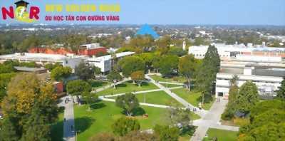 Hệ thống trường Đại học bang California - trường Long Beach