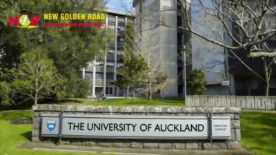 THE UNIVERSITY OF AUCKLAND học bổng hấp dẫn  -  Du học New Zealand – nền giáo dục đẳng cấp châu lục