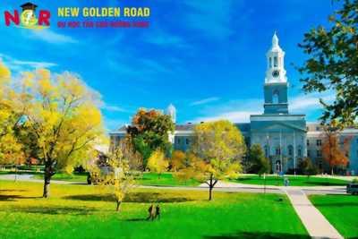 Du học trường Mississippi College chất lượng - chí phí phải chăng cùng Du học Tân Con Đường Vàng