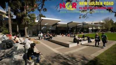 Lý do nên du học New Zealand tại trường Đại học Waikato ?