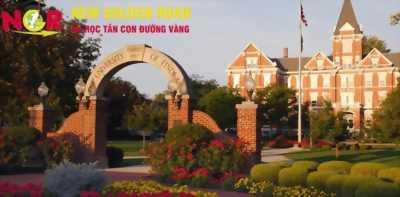 Trường đại học Findlay – du học đại học Mỹ - du học Tân Con Đường Vàng