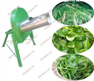 Cung cấp máy băm chuối,rau cỏ OS15 đa năng