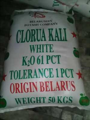 Potassium Chloride, khoáng KCl nguyên liệu dùng thủy sản, phân bón, giá cực rẻ