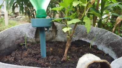 Cọc cắm nhựa cài béc tưới cây.