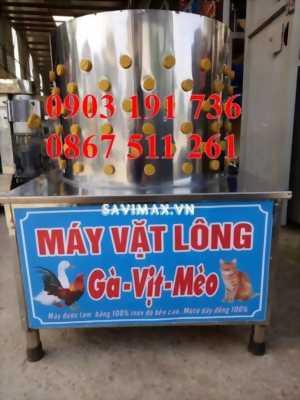 Máy vặt lông gà vịt giá rẻ nhất thị trường Hà Nội, Nơi bán máy vặt lông gà giá rẻ.