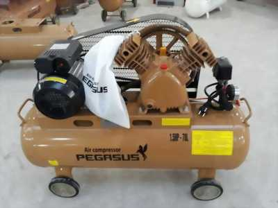 Máy Nén Khí Dây Đai Pegasus TM-V-0.12/8 70L