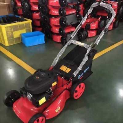 Máy cắt cỏ đẩy tay Honda HRJ216K2 cắt cỏ sân gofl
