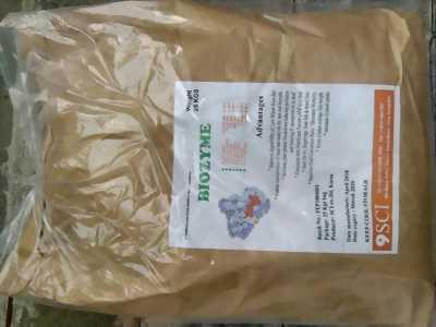 Cung cấp Biozyme nguyên liệu, enzyme tiêu hóa tăng trọng giá sỉ