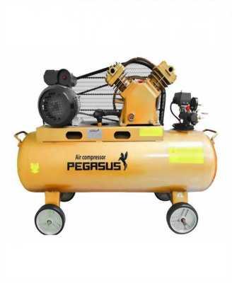 Máy nén khí dây đai PEGASUS TM-V-0.17/8-180L