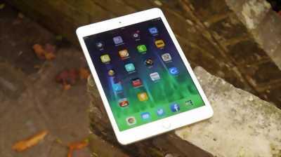 Apple Ipad Mini 2 sọc màn như hình only wifi