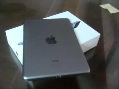 iPad mini 2 wifi 16g
