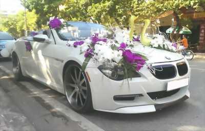 Cho thuê xe cưới mui trần Audi,BMW, Lexus is 250 tại TP HCM