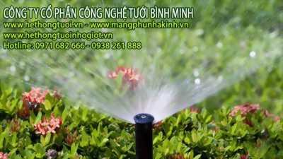 Công nghệ trồng rau của israel tai ha tinh, công nghệ trồng rau quả sạch, công nghệ trồng rau thủy canh