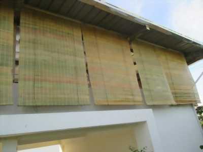 Cần mua mảnh trúc che nắng