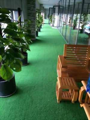 cỏ nhân tạo nhập khẩu giá rẻ cao 3cm