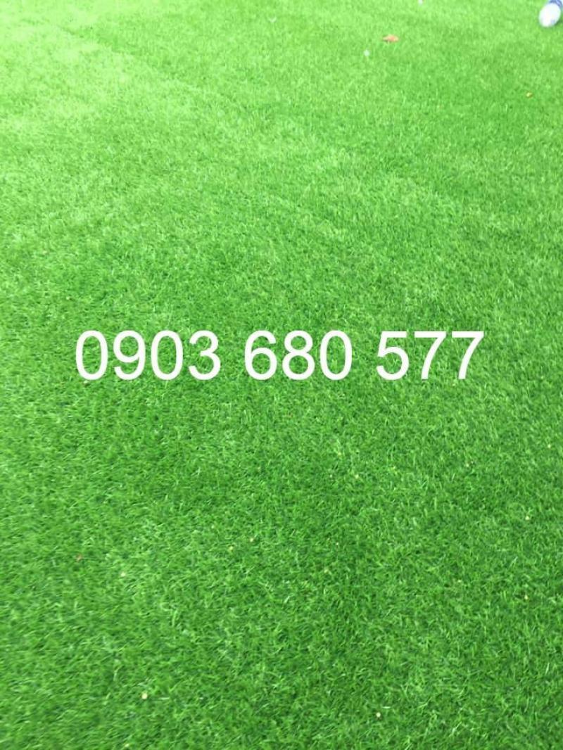 Nơi bán cỏ nhân tạo giá rẻ, chất lượng cao