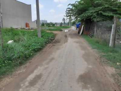 Bán nhà hẻm xe hơi 7 chỗ ở đường Tám Đúng, xã Long Thượng, Cần Giuộc, Long Hậu.