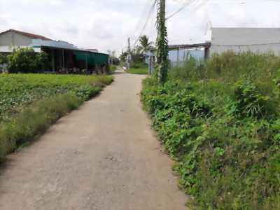 Bán nhà 94m2, đường xe hơi ở ấp Phước Hưng, xã Phước Lâm, Cần Giuộc, Long An