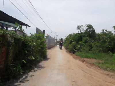 Bán đất nền sổ hồng riêng, giá mềm đầu tư tại ấp Phước Hưng 1, xã Phước Lâm, huyện Cần Giuộc, tỉnh Long An.
