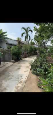 Chính chủ cần tiền bán gấp nhà cấp 4 gần cầu Mồng Gà, thuộc xã Thuận Thành, huyện Cần Giuộc, tỉnh Long An