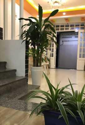 Bán nhà đường Phan Bội Châu, phường 14, quận Bình Thạnh (DT: 28m2, giá 3 tỷ 700)