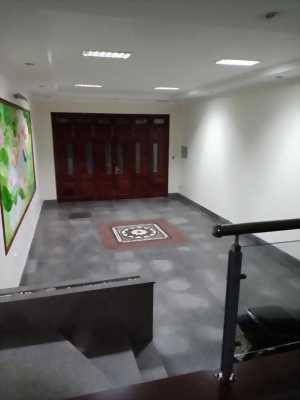 Bán nhà Hào Nam ô tô vào nhà 72m2 7 tầng 5m MT giá 14tỷ