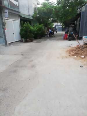Nhà 4x19.5, 1 tấm, Hẽm xe tải, Nguyễn Hữu Dật, TPHCM