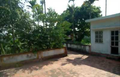 căn nhà và đất ở rộng 1000 mét vuông