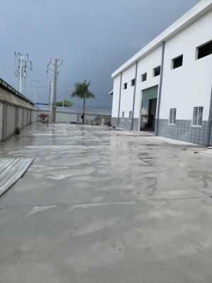 Cho thuê nhà xưởng mới xây dưng trên đường Nguyễn Hữu Trí, xã Tân Bửu, huyện Bến Lức, tỉnh Long An