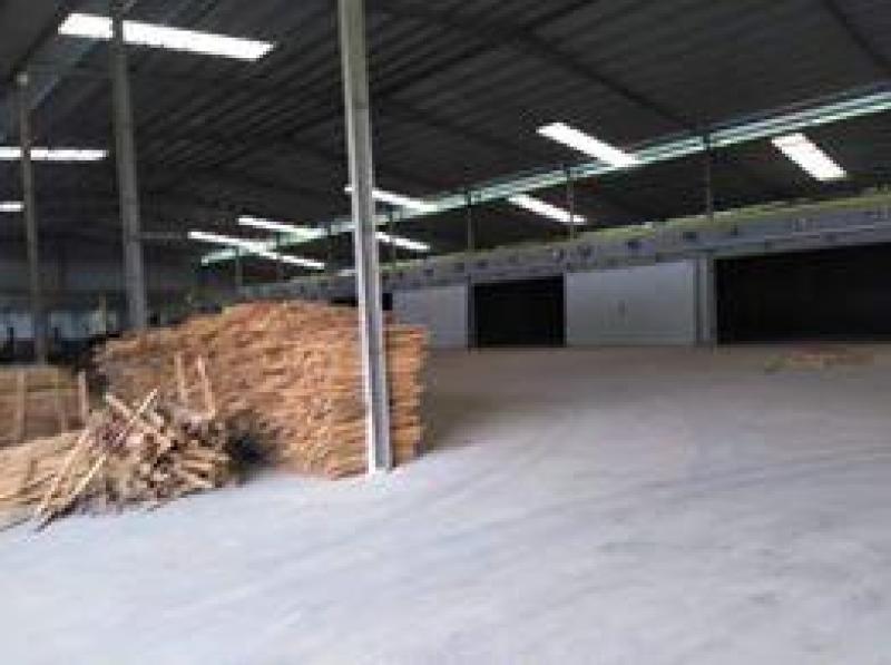 Cho thuê nhà xưởng 600m2, mặt tiền đường Bông Văn Dĩa, gần BV Nhi Đồng 3.