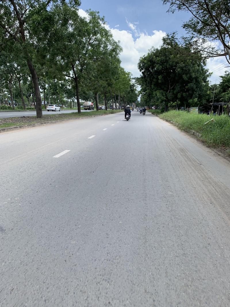 Cho thuê kho xưởng mặt tiền Trịnh Quang Nghị, xã Phong Phú, Bình Chánh