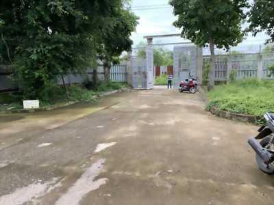 Cho thuê kho xưởng mặt tiền đường 6 tấn cách QL50 khoảng 400m, Phong Phú, Bình Chánh.