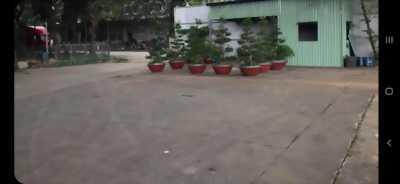 Cần bán nhà xưởng đường container cách mặt tiền đường 100m thuộc địa phận huyện Cần Đước, tỉnh Long An