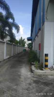 Cho thuê nhà xưởng cơ sở hạ tầng hoàn thiện, xưởng trống có thể vào hoạt động ngay tại KCN Long Hậu, huyện Cần Giuộc, tỉnh Long An