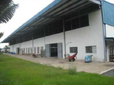 Nhà xưởng sx hạt điều DT 40.000m2 cần sang nhượng ở Bình Phước