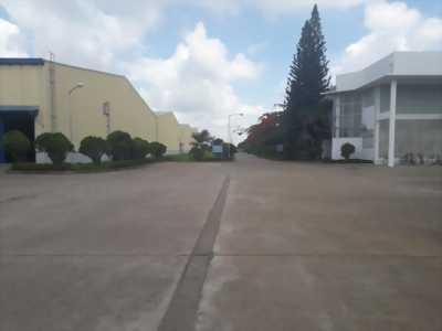 Cho thuê nhà xưởng mặt tiền đường Trần Phú, Nhơn Trạch 2, Đồng Nai.