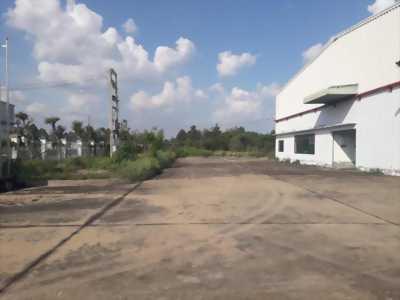 Cho thuê nhà xưởng mặt tiền thuộc Khu công nghiệp Nhơn Trạch III, xã Hiệp Phước, huyện Nhơn Trạch, tỉnh Đồng Nai.