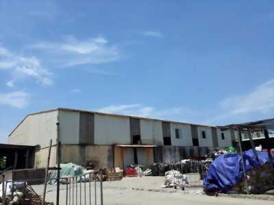 Chuyển nhượng công ty và nhà xưởng tại Văn Lâm Hưng Yên 15.800m2