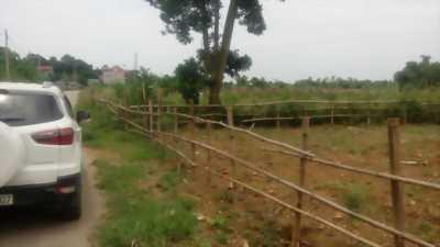 Nhượng QSD 4000m2 đất trang trại nhà vườn tại xã Hợp Hòa