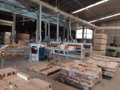 Sang xưởng gỗ