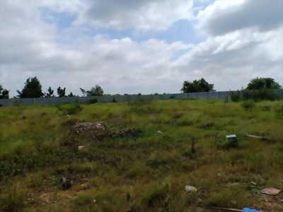 Bán đất SXKD 6700m2 Tân Thới Nhất Quận 12 TPHCM