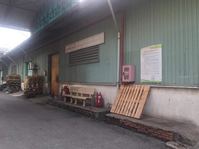 Cho thuê kho chứa hàng, xưởng sản xuất mặt tiền đường container Lạc Long Quân thuộc Phường 11, Quận 3