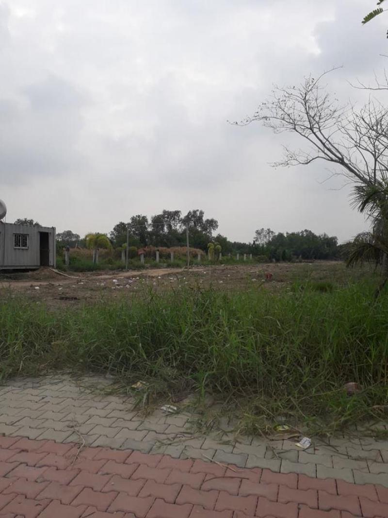 Cho thuê kho xưởng khuôn viên 6.200m2, kho xưởng 4.200m2 Phường Linh Xuân, Quận Thủ Đức.