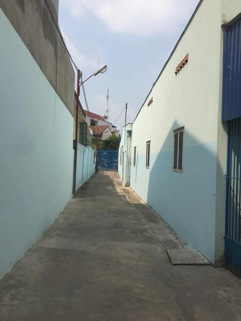 Cần cho thuê gấp nhà kho Cục Hải quan Đồng Nai