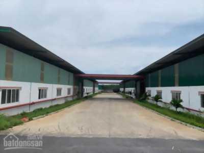 Công ty cần cho thuê Showroom, mặt bằng đất trống mặt tiền KCN phường An Bình, thành phố Biên Hòa, tỉnh Đồng Nai
