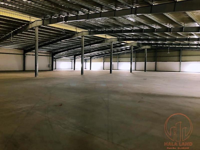Cho thuê kho xưởng công nghiệp Hải Dương, 13.000m2