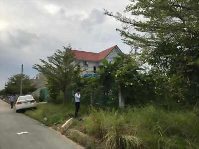 Ngân hàng thanh lý 5 lô khu dân tân tạo và bình chánh đường 20m