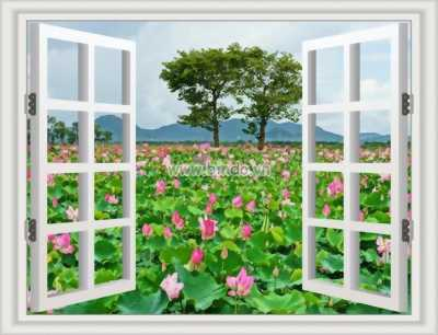 mẫu tranh cửa sổ 3d