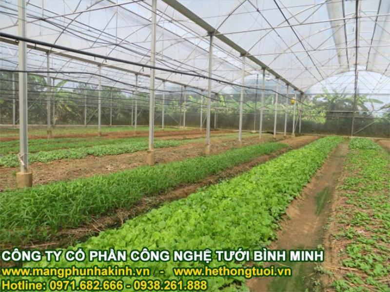 Lưới chắn côn trùng nhà kính, lưới làm nhà lưới, cách làm nhà lưới đơn giản, nhà lưới nhà màng