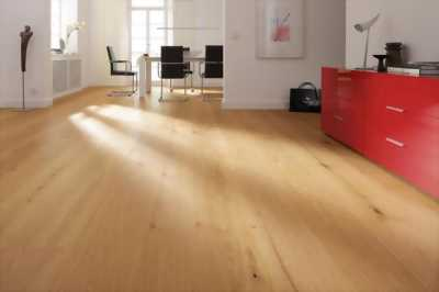 Cung cấp sàn gỗ công nghiệp Inovar giá rẻ